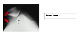 L'attribut alt de cette image est vide, son nom de fichier est 20090123_151313.jpg.